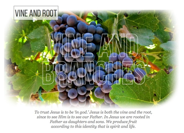 vineandroot